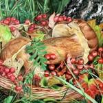 Кемеровские эксперты рассказали, где нельзя собирать грибы и ягоды