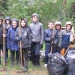 Уборка в сосновом бору Кемерова