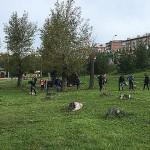 Осинники приняли участие во Всероссийском субботнике
