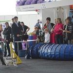 Станция юннатов Новокузнецка – участник I специализированной шоу-выставки «ZOOКузнецк»