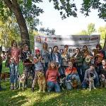 Первый городской фестиваль собак «DogFest»