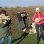 Выбираем волонтёрский экотуризм